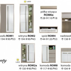 Living Roma